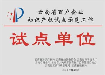 云南省知识产权试点单位
