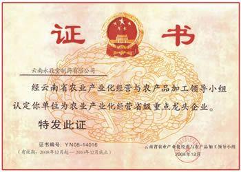 云南省农业产业化龙头企业证书