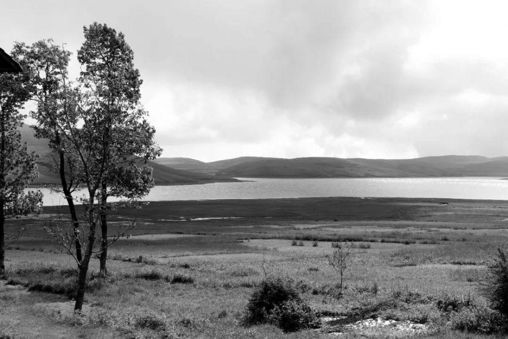 原生故事丨云上高原,那片水边的芳草地,常常入梦来